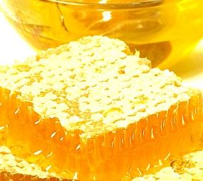 Мед, антибиотик, дефенсин-1